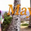 ハワイのファンウェイブでフリーサーフ:マヤ・ガベイラ
