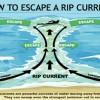 海で安全に遊ぶために知るべき離岸流(リップカレント)のメカニズム