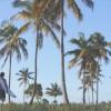 ジョーディ・スミスのダーバン(南アフリカ)&モザンビークでのフリーサーフ動画