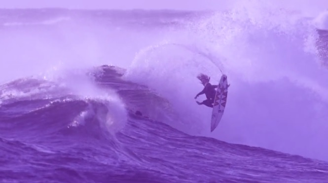 Matt Meola fade to purple