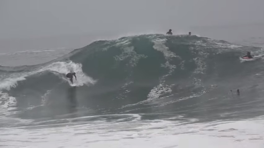 the wedge 2016.6