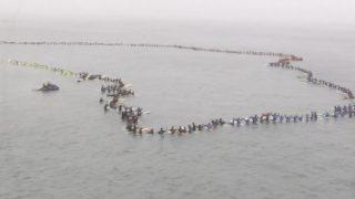 ギネス世界記録:500人以上が一堂に会したパドルアウト@ハンティントンビーチ
