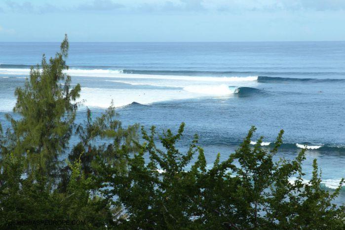 2011年から24件目となるシャークアタックがレユニオン島で発生